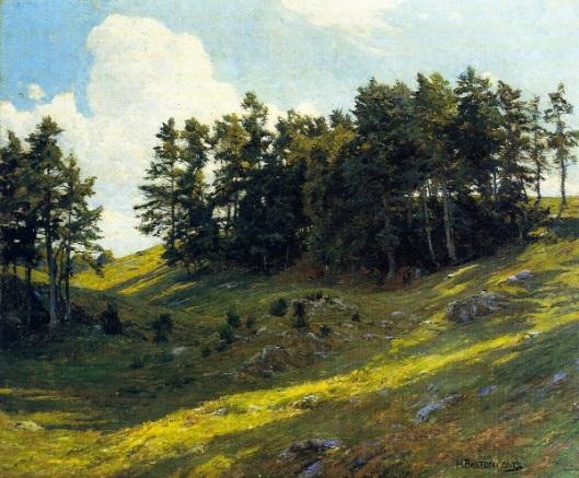 Sun Dapples Hillside