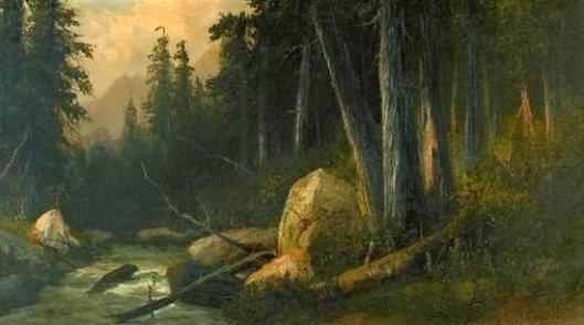 Boulder Creek, Santa Cruz Mountains, California