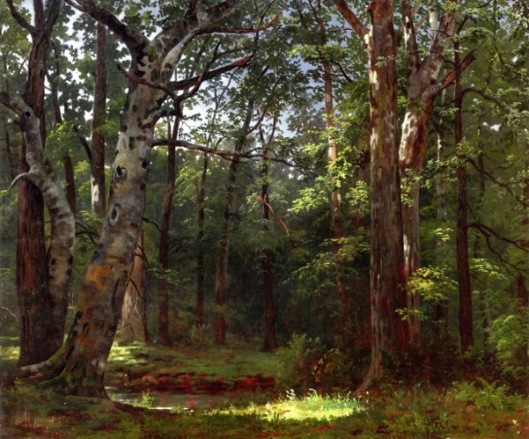 Swamp - The Buttonwood Grove