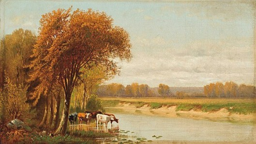 Cattle Along A River
