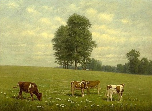 Cows In A Summer Pasture