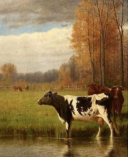 Cows In Pastoral Autumn Landscape