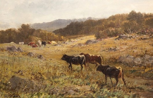 Cows Pasturing On A Hillside