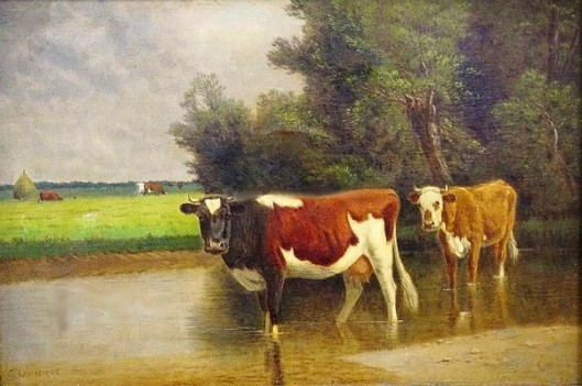 Cows Standing In A Creek