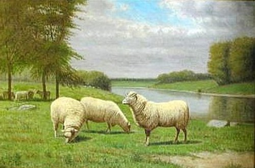 Sheep Grazing By The Pond
