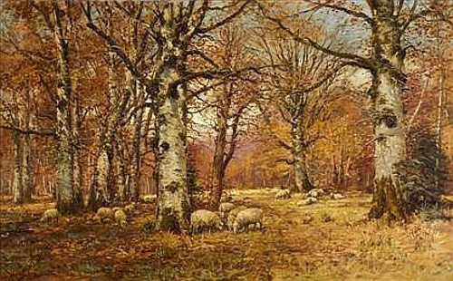 Sheep Grazing In A Woodland Interior