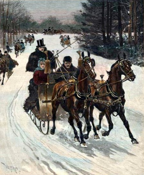 Sleighing In Central Park During The Brief Winter Spell