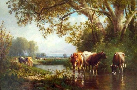 Cattle In A Stream