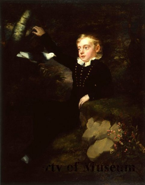 Boy With Bird In Woodland Scene