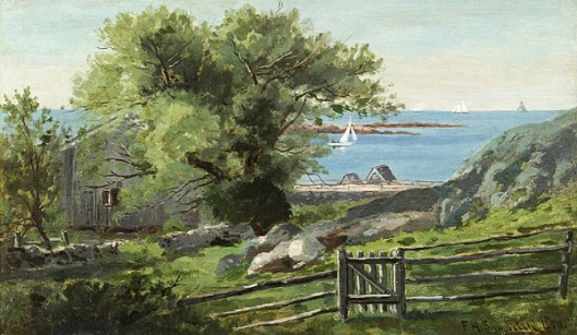 Old Willow At Cohasset, MA