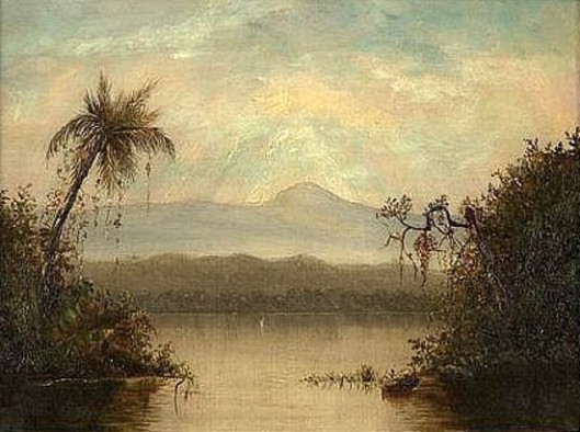 Tropical River Landscape In South America