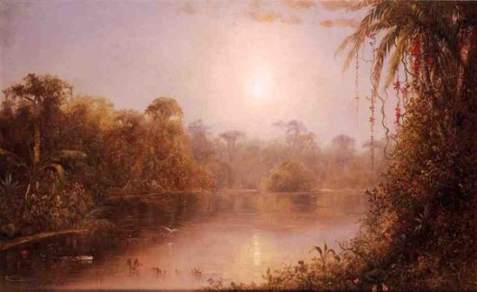 Tropical River Scene