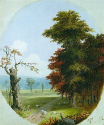 Spring Scene With Sheep
