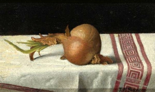 Onion On Tablecloth