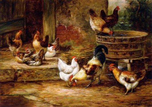 Barnyard Fowl