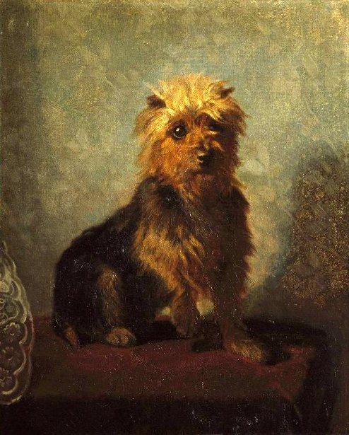 Chadwick's Dog