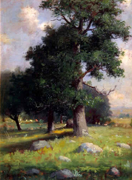 Old Tree, Summer