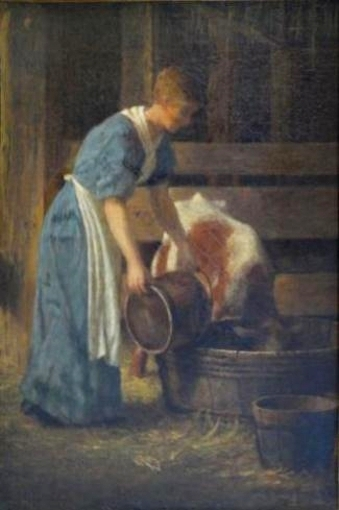 Woman Feeding A Cow
