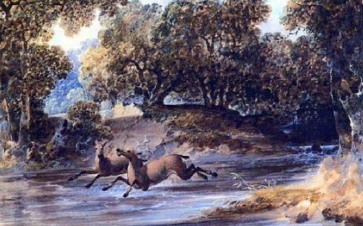Landscape With Deer, North Carolina