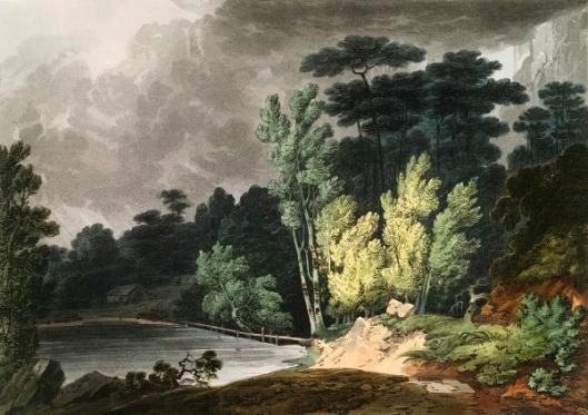 Spirit Creek, Near Augusta, Georgia