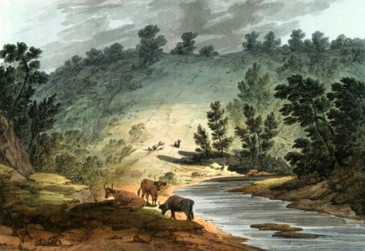 View On The Wissahickon, Pennsylvania
