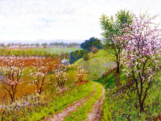 Road With Blossoming Trees