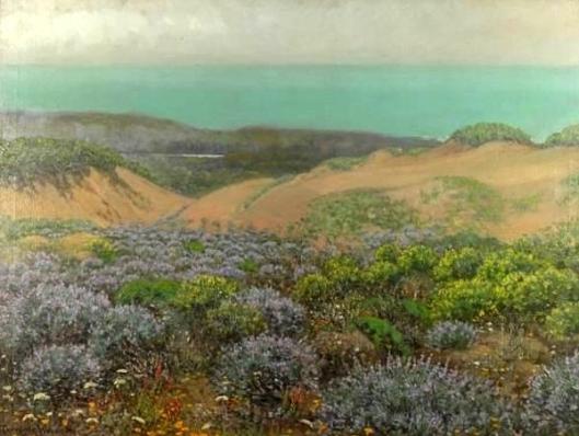 San Francisco Sand Dunes And Lake Merced
