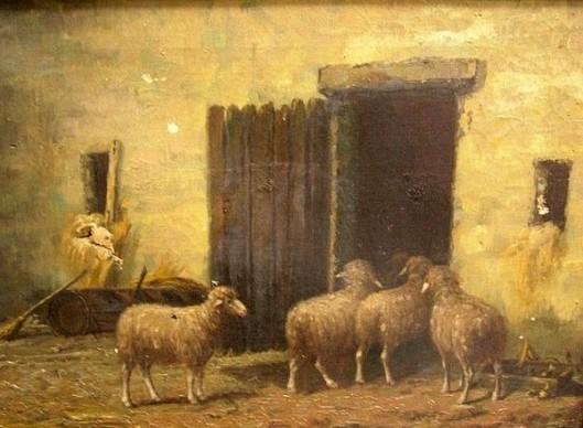 Barn Scene With Sheep