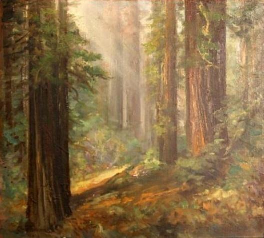 Humbolt Redwoods, Glendale, California