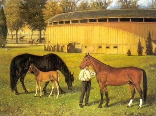 Training Track At Fairgrounds With Horses
