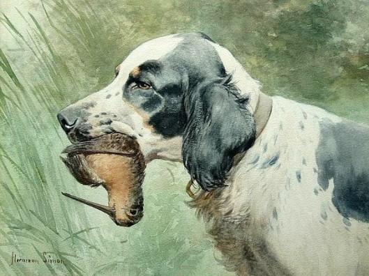 Dog With Woodcock