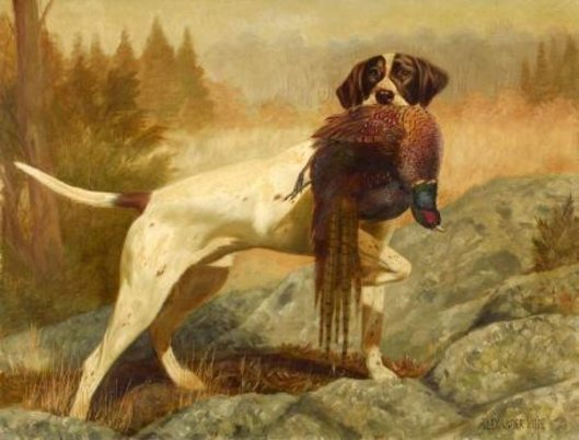 Pointer With Pheasant