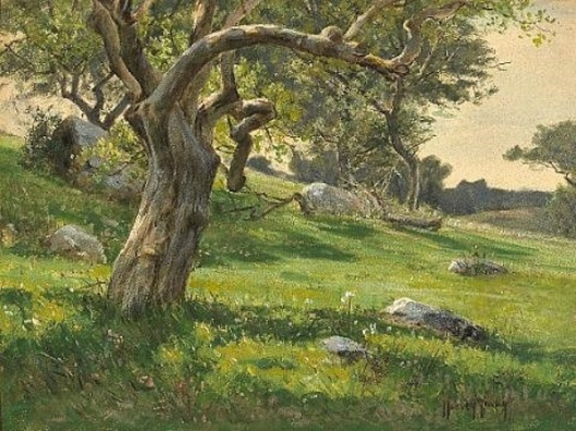 Trees And Wildflowers On A Hillside