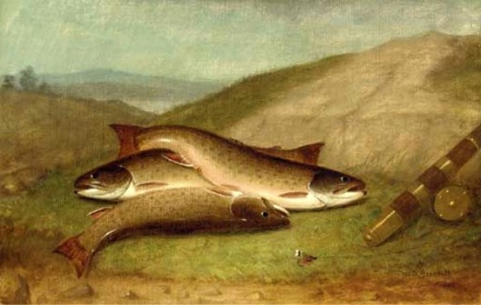 Catch Of The Day - Trout On A Riverbank