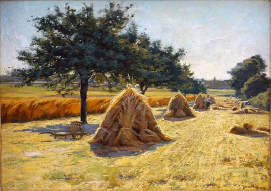 Harvest Scene In France