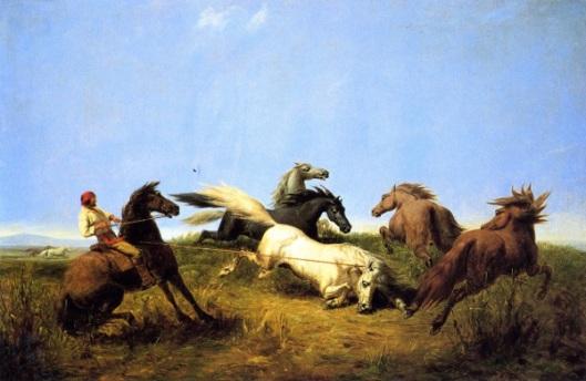 Hunting Wild Horses