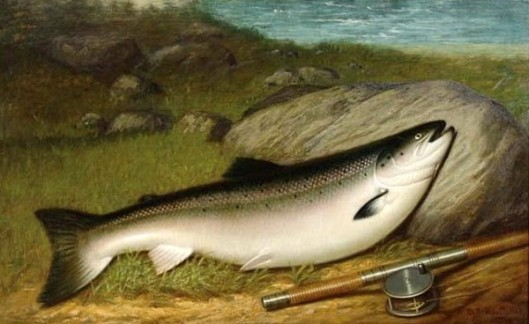 The Trophy Salmon