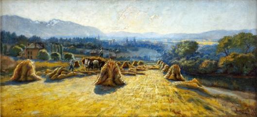 Wheat Harvest In Salt Lake