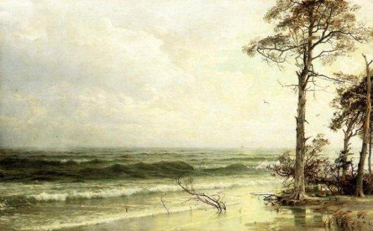 Cedars On The Shore Near Atlantic City