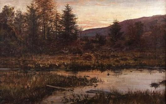 Early Dawn In The Marsh
