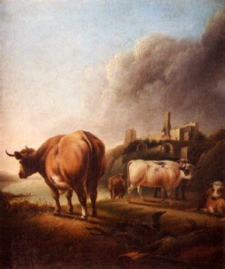 Highland Cattle Near A Castle