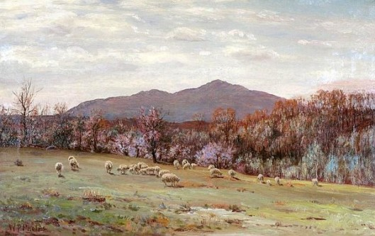 Mount Monadnock Landscape With Sheep Grazing