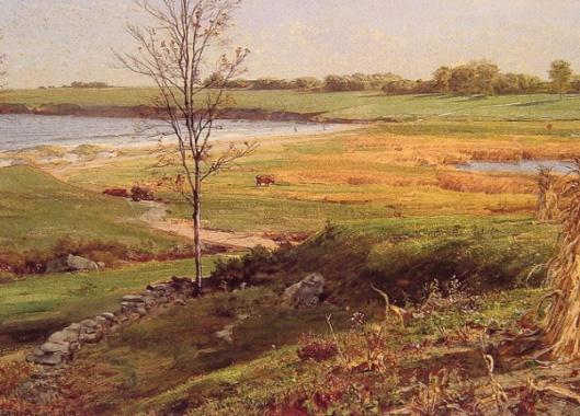 Salt Marsh By The Sea