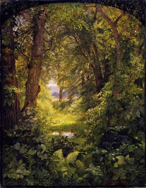 Woodland Landscape - Woodland Glade