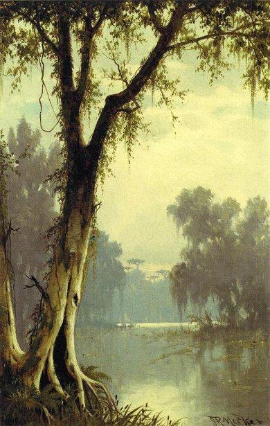 A Louisiana Bayou