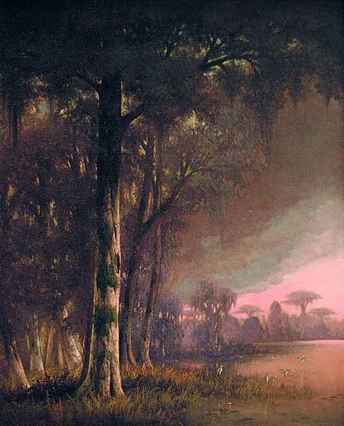 Bayou Twilight