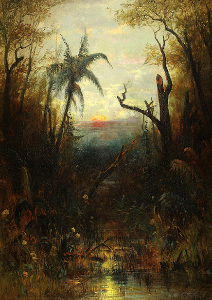 Southern America Tropical Landscape