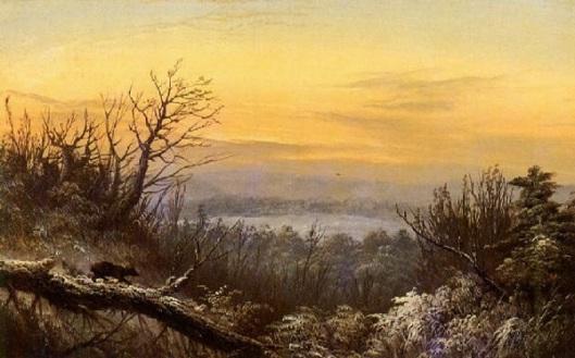 Winter Landscape With Bear