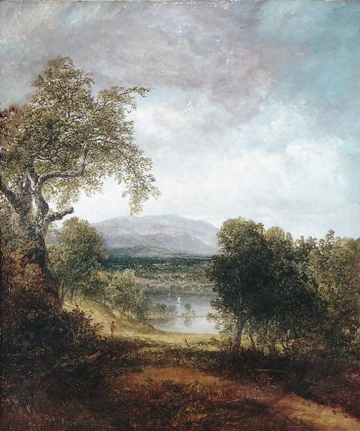 A River Glimpse