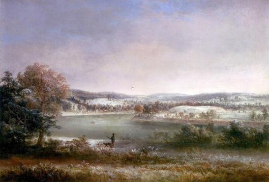 Early Winter, Hiawatha Island, Owego, New York